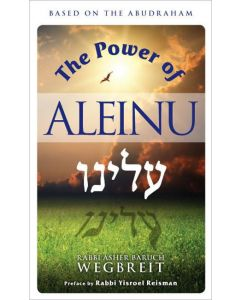THE POWER OF ALEINU